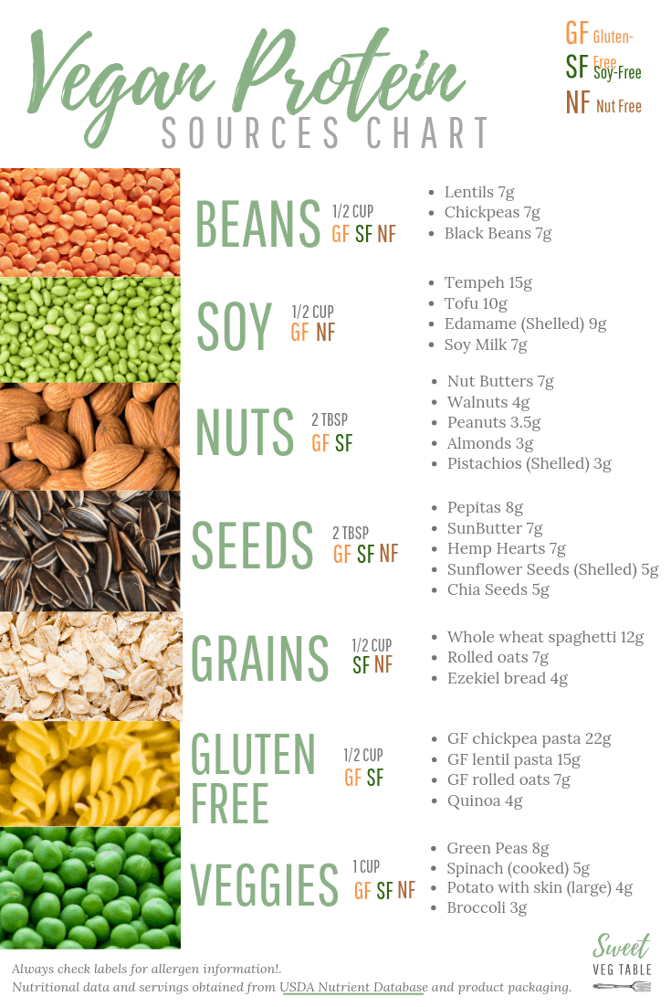 Free Printable 7 Types Of Vegan Protein Sources Chart Vegan Protein Sources Vegan Protein Sources Chart Vegan Protein