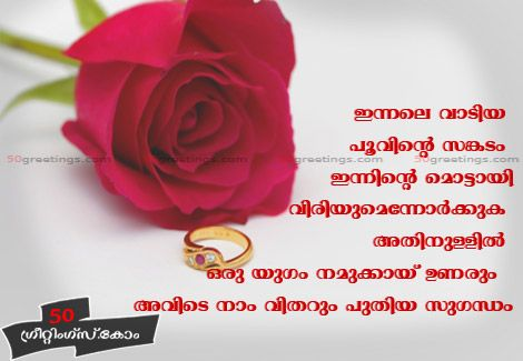 Love Of Photo Red Roses Red Roses Greetings Love Malayalam Love Scraps Malayalam Love Images Rose Flower Quotes Flower Quotes Flower Images