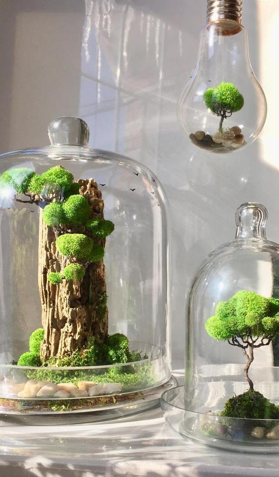 Glass Dome Terrarium -Artificial Plant Decoration For