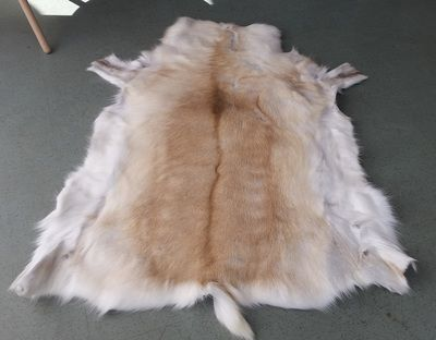 Cool Cow Rugs (& now Reindeer)<br />Wholesale Hides ( est 2009)