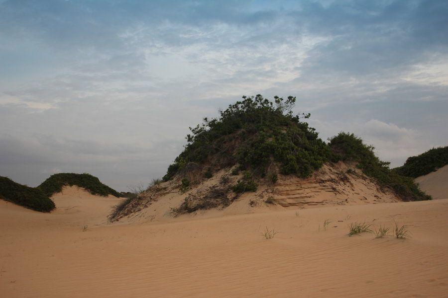 Desert Stock 3 by therainbowbrain