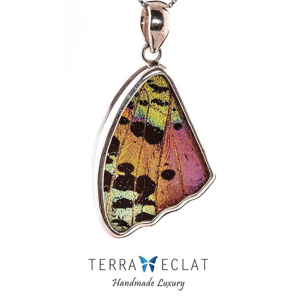تعليقه من أجنحت الفراشات الحقيقية جمعية من امريكا الجنوبية Real Chrysiridia Madagascariensis Rainbow Bottom Unique Gemstones Real Butterfly Wings Jewelry Art