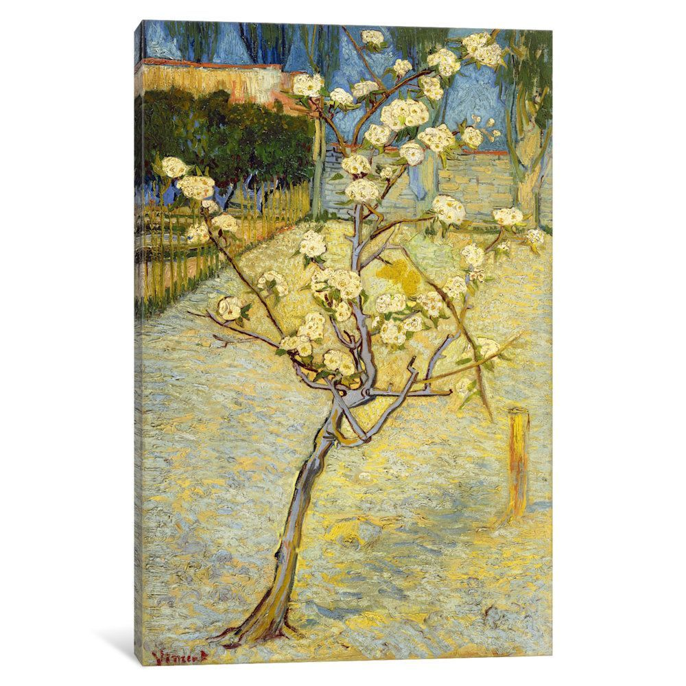iCanvas Small Pear Tree in Blossom by Vincent van Gogh Canvas Print ...
