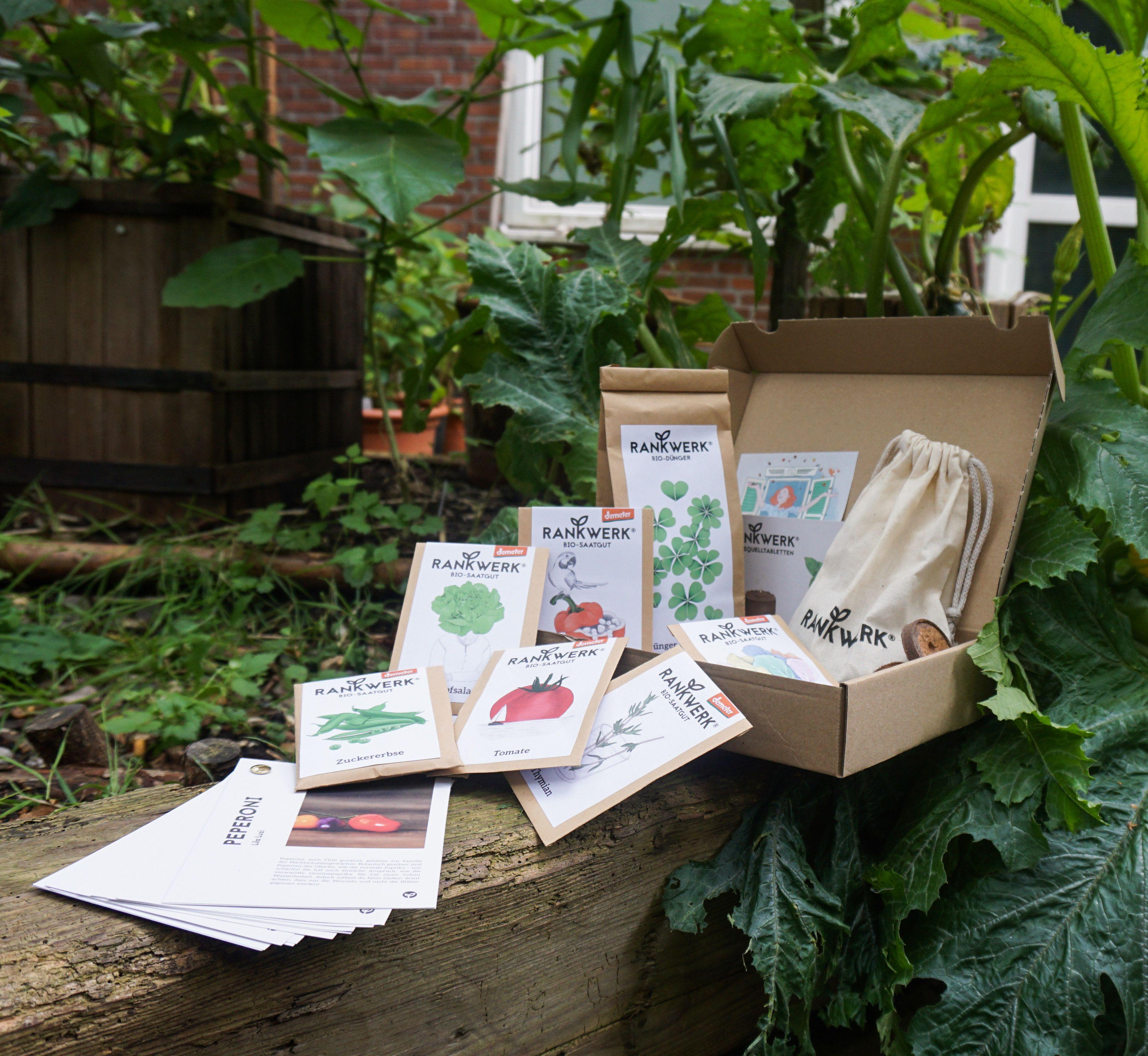 Jahresbox Geschenke Verschicken Bio Saatgut Saatgut