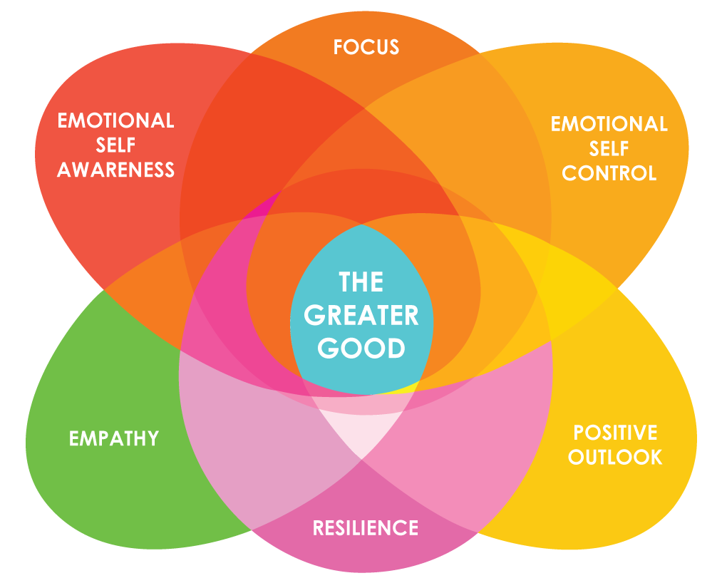 Coaching for Emotional Intelligence - a new coaching and