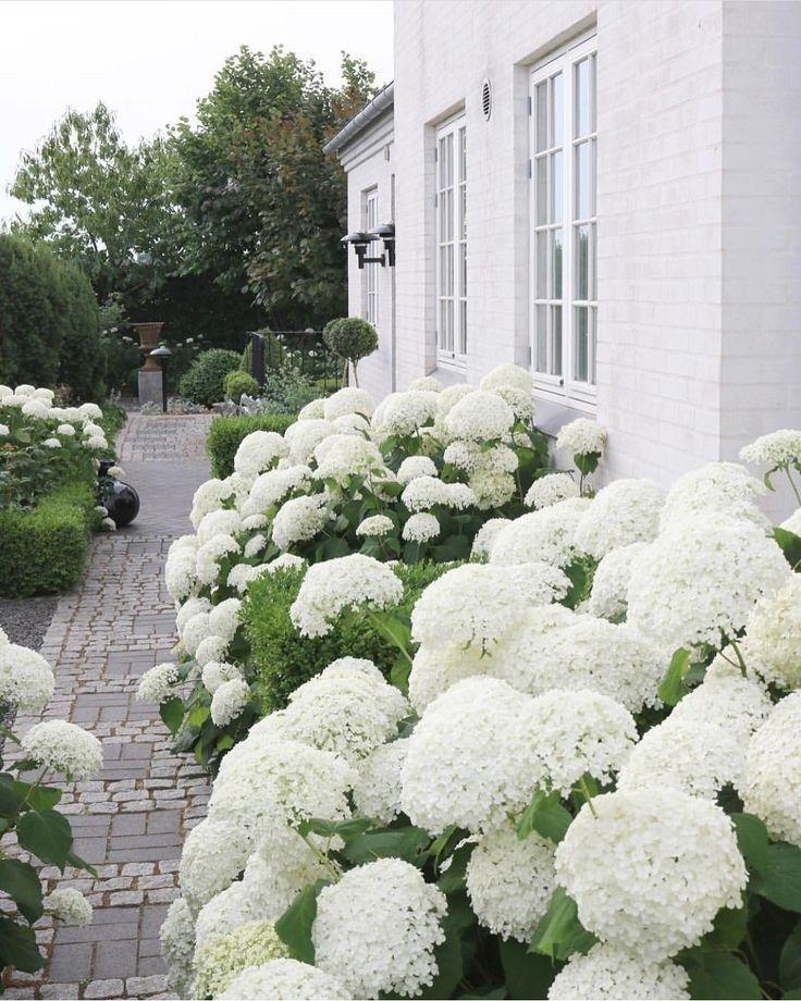 42 inspirierende Ideen für liebevolle Gartenlandschaftsgestaltung von unseren Experten 36 #gardenlandscaping