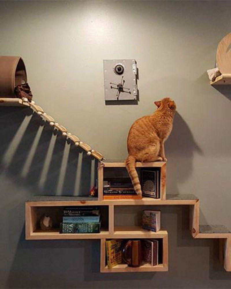Arbre A Chat Mural Design 5 diy pour fabriquer un arbre à chat | arbres à chat maison