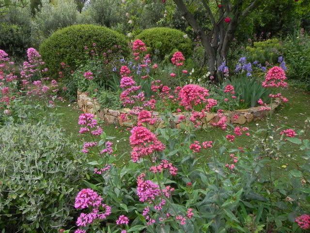 Giardino Pietra Rossa Sardegna : Maurizio usai la pietra rossa sardinia сад pinterest giardini