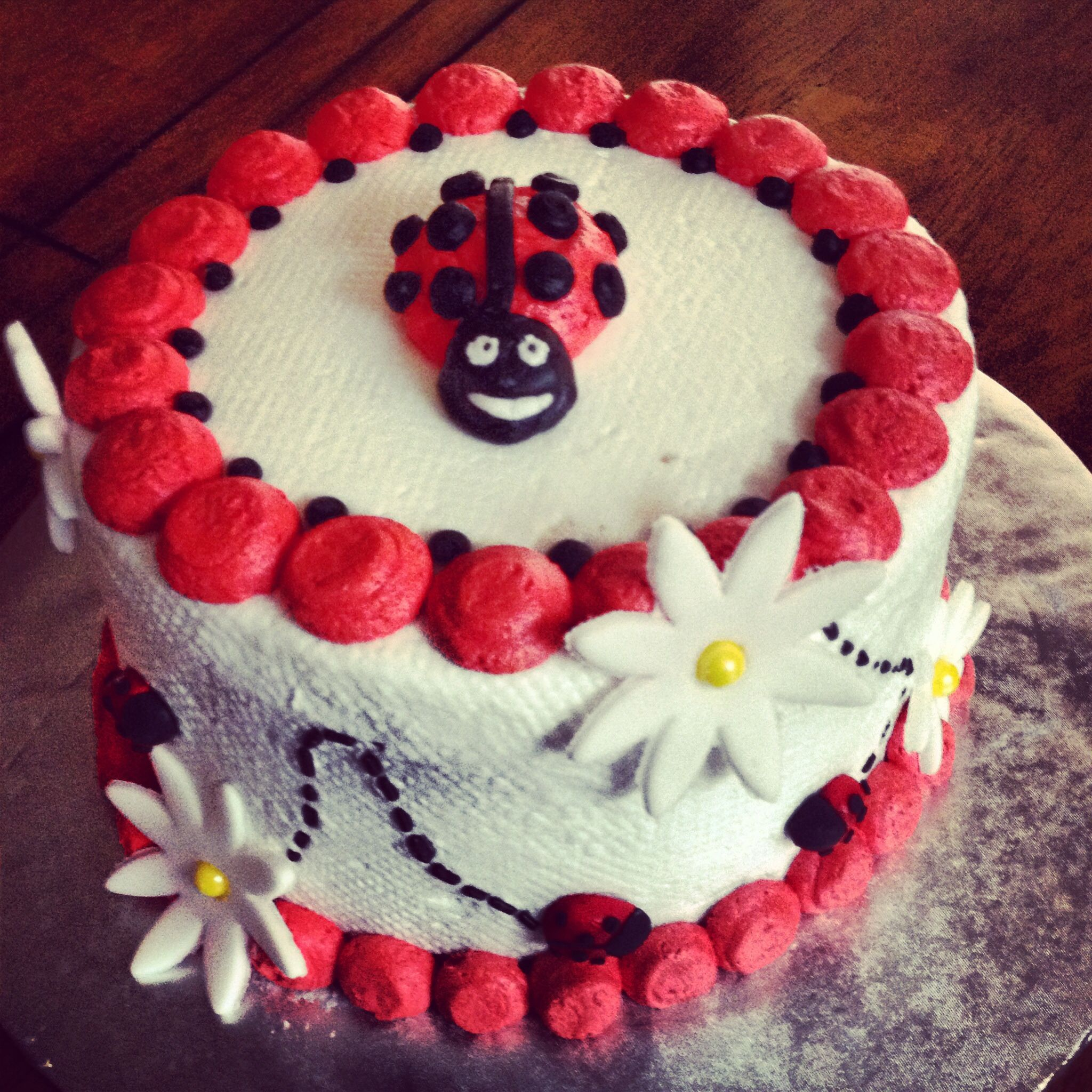 Ladybug Smash Cake First Birthday