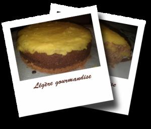 Cheesecake chocolat/ananas  http://www.legeregourmandise.fr/quote/cheesecake-chocolat-ananas/