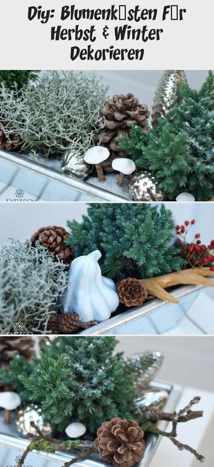 Blumenkasten Dekoration Dekorieren Diy Für Herbst Herbst Dekoration Landhaus Winter Dekorationweihnachtenfenster Christmas Wreaths Holiday Decor Decor