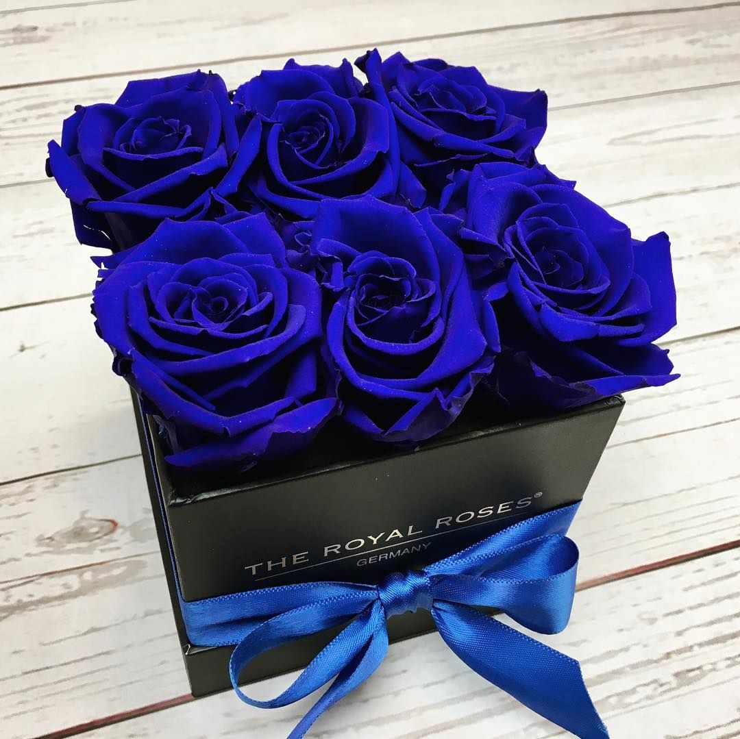 Royal Blue Theroyalrosesgermany Rosebox Infinity Royal Blueroses Rosen Box Blaue Rosen Blaue Rose