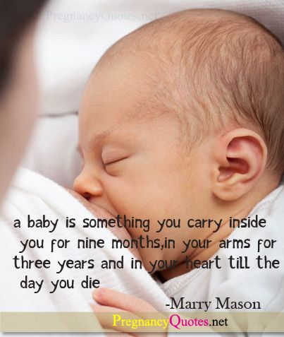 Pregnancy Quotes With Pictures Pregnancy Quotes Pictures Images