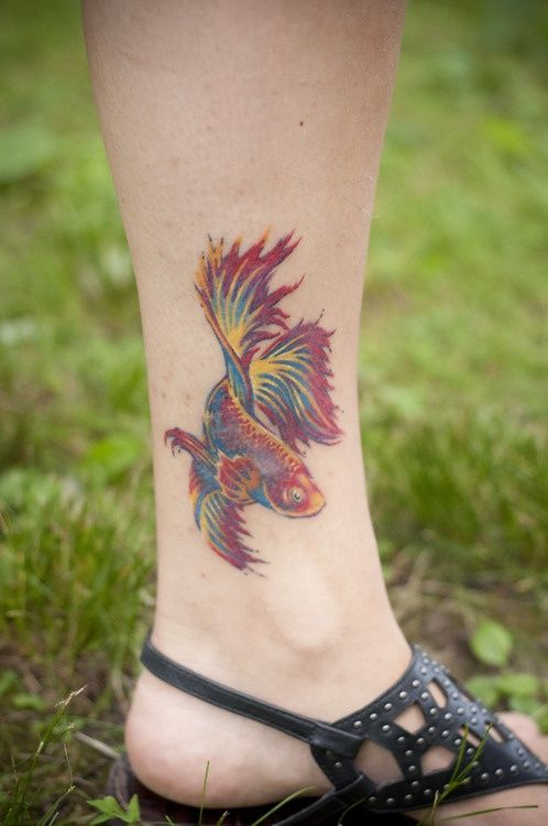 Image Result For Small Betta Fish Tattoo
