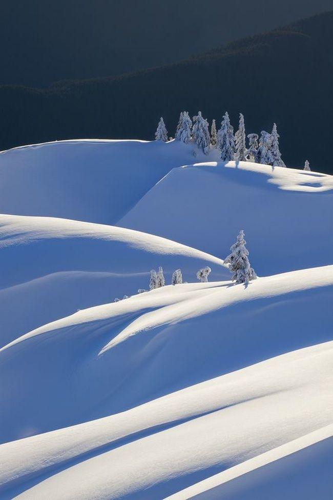 Quand le minimalisme et l'hiver fusionnent, cela donne 25 photos vraiment hypnotisantes #winterlandscape