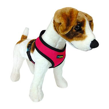 Jump Air Mesh Harness In Pink From Pet Valu Dog Harness Dog
