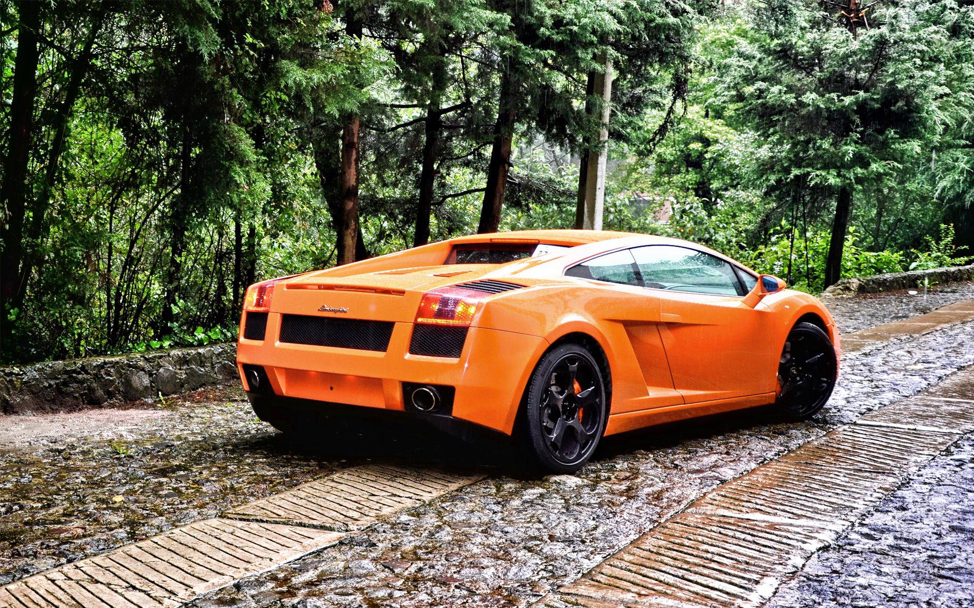 Lamborghini Gallardo Back