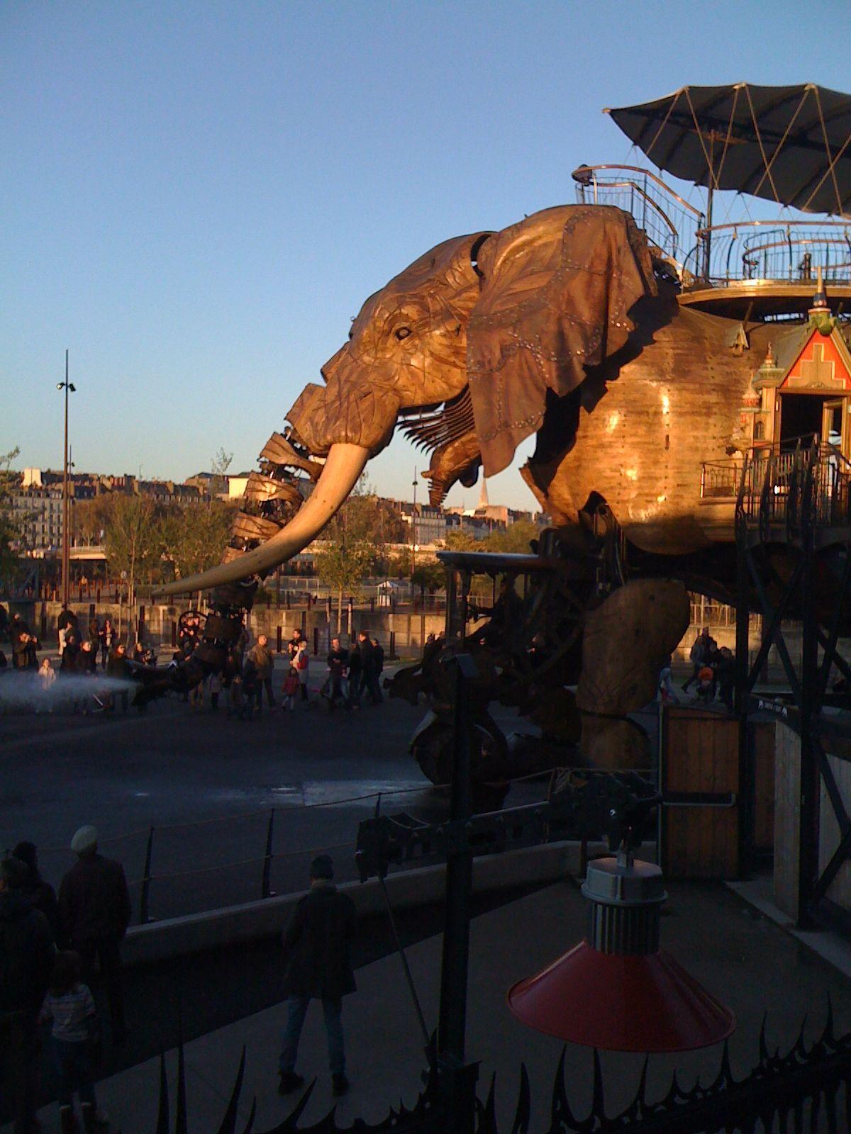 Éléphant des machines de l île.