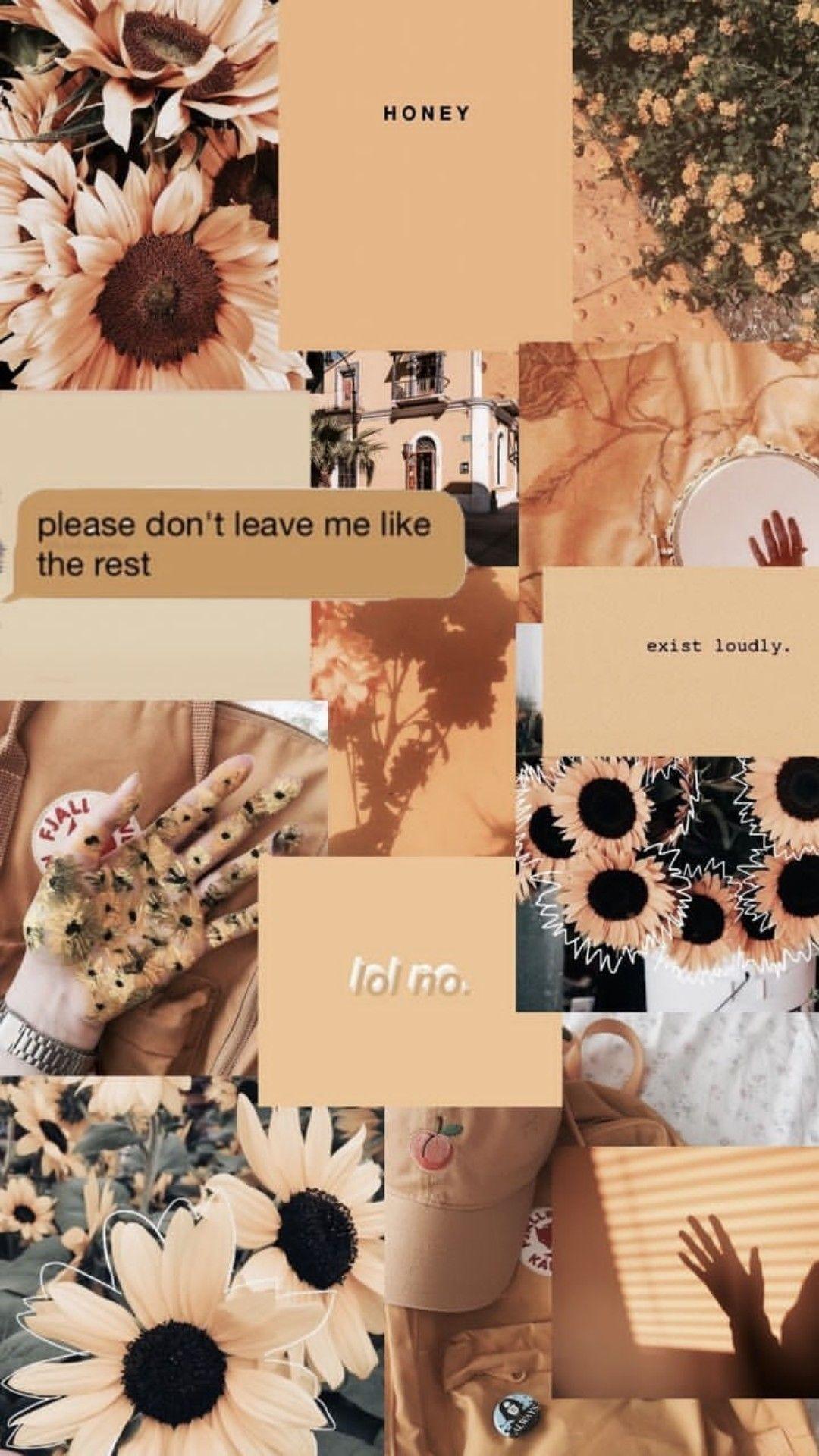 •Pinterest @𝒆𝒔𝒕𝒆𝒇𝒂𝒏𝒆𝒔𝒊𝒍𝒗𝒂