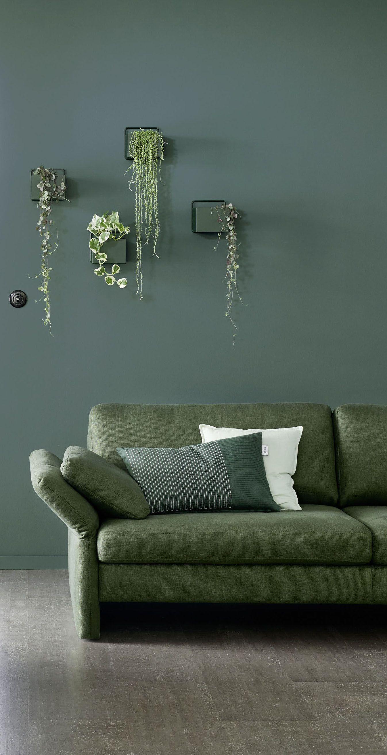 Wandfarbe Grun Designfarbe Besinnliches Waldgrun Schoner Wohnen Kollektion In 2020 Schoner Wohnen Wandfarbe Schlafzimmerfarbe Wandfarbe Grun