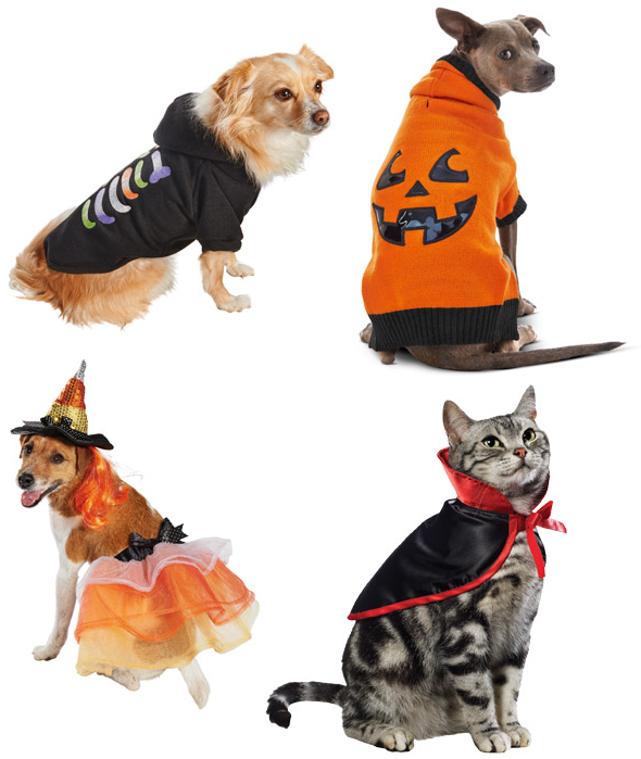 Halloween Costumes For Pets 50 Off 30 Petco Promo Code Pet
