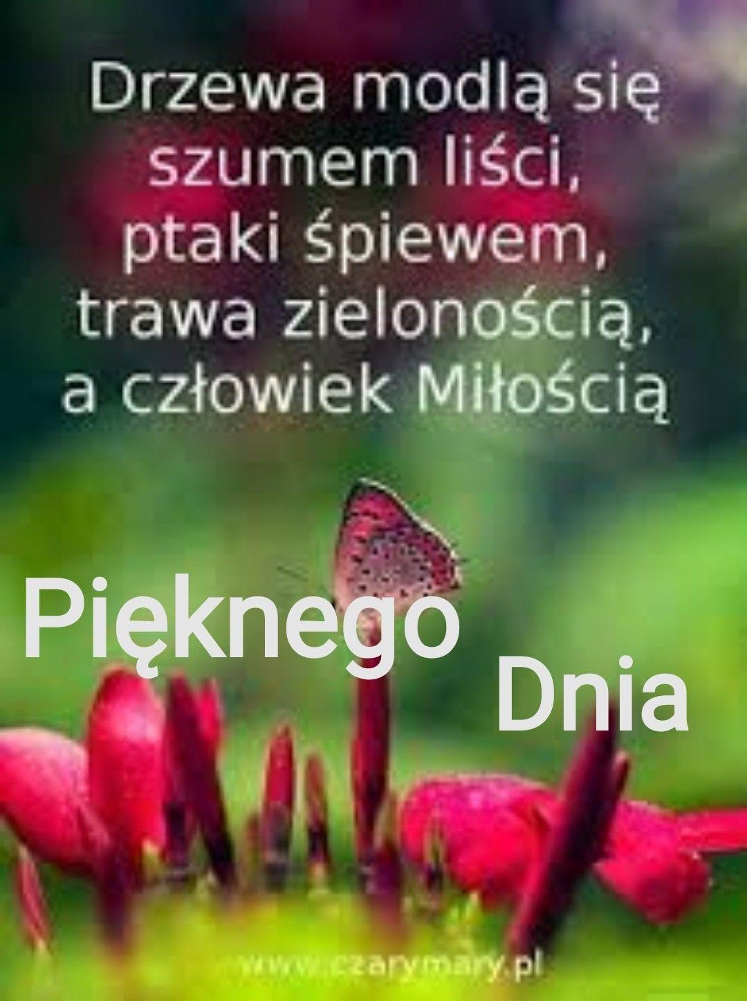 Pin By Gosia Kuzminska On Zyczenia In 2020