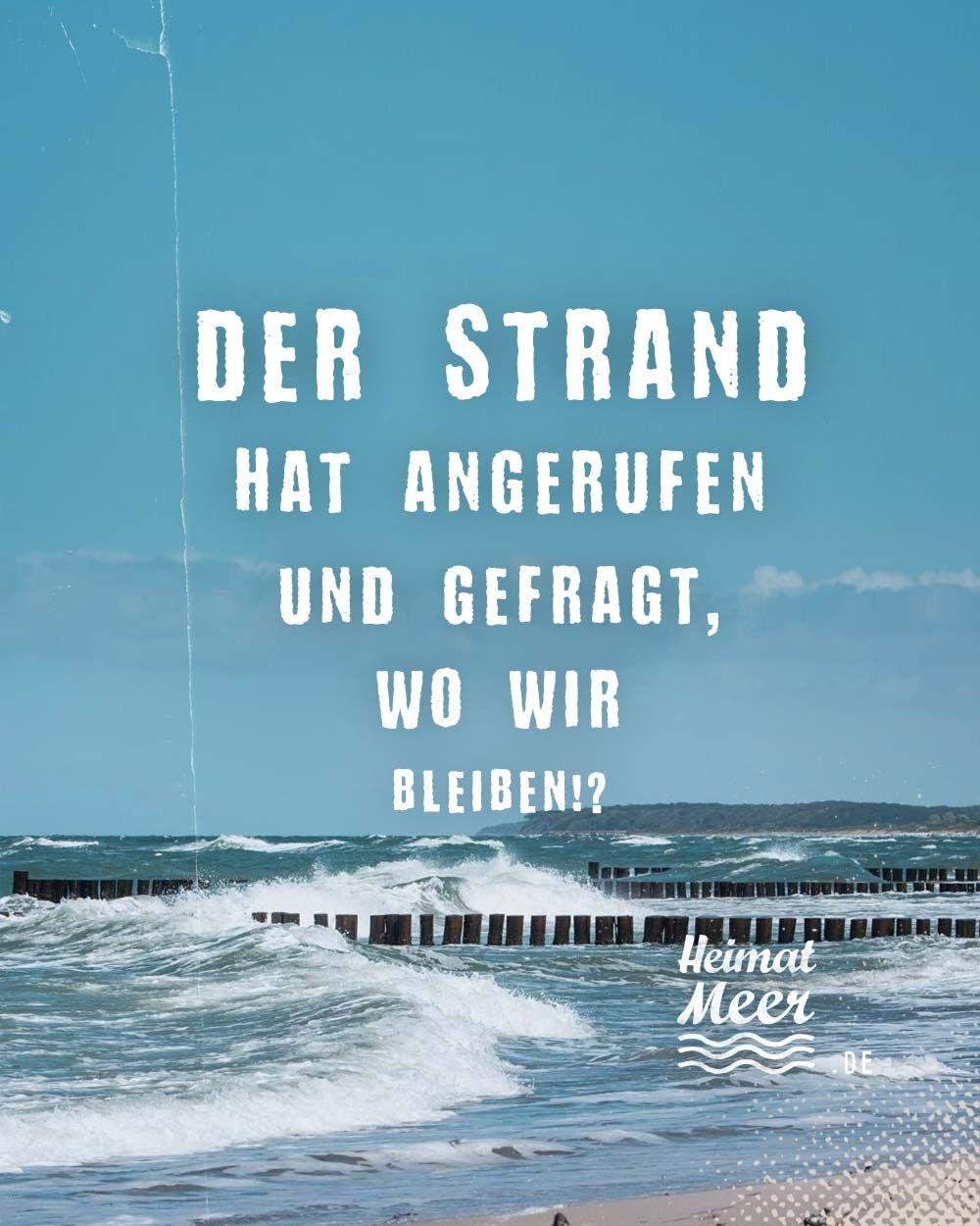 Der Strand hat angerufen 📞... Mee(h)r>>