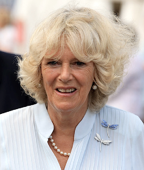 HRH The Duchess Of Cornwall Wearing A Pair Of Van Cleef