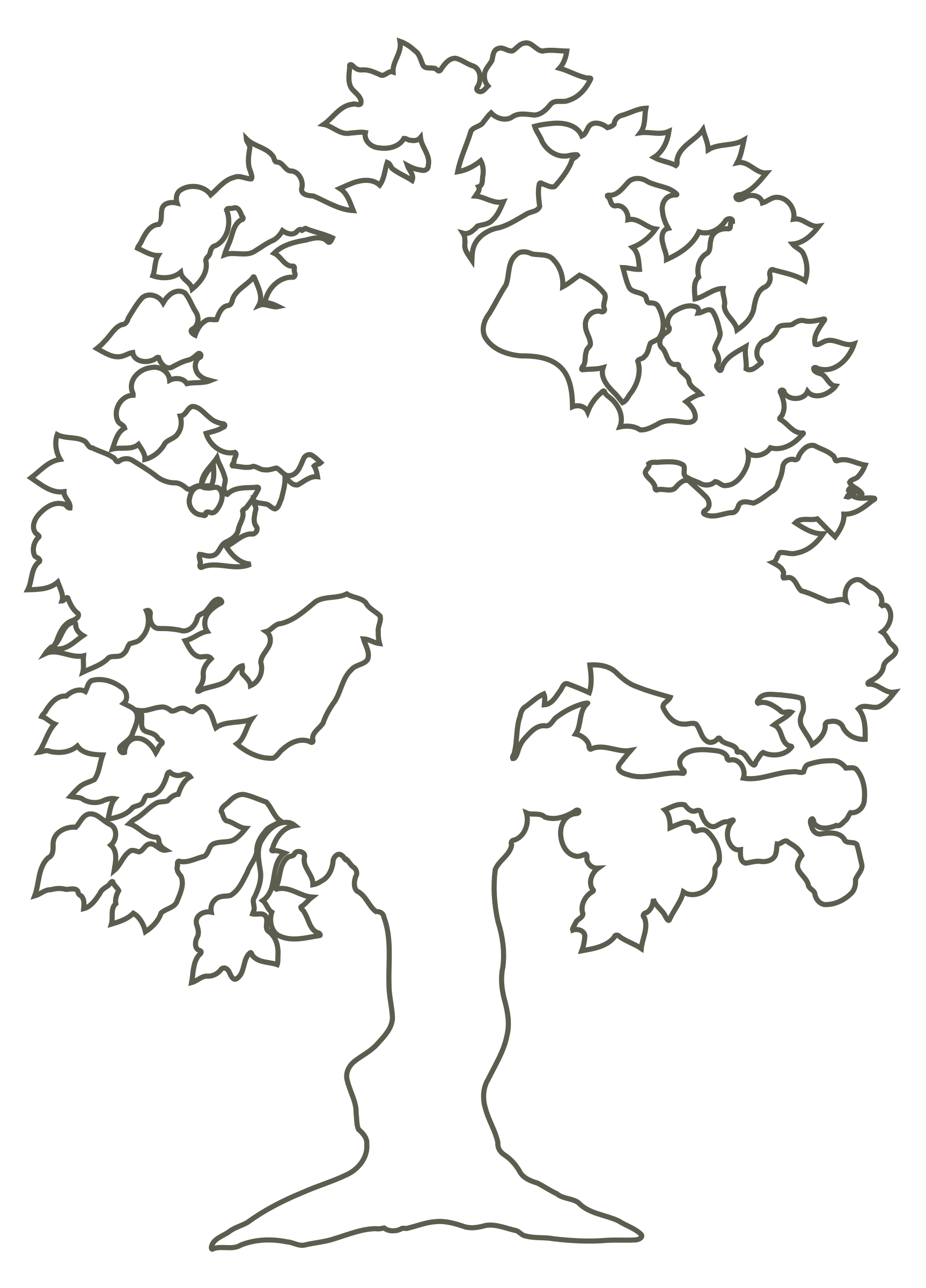 Simple Flowering Tree Outline By Andy Silhouette Of Flowering Tree Clipart On Openclipart