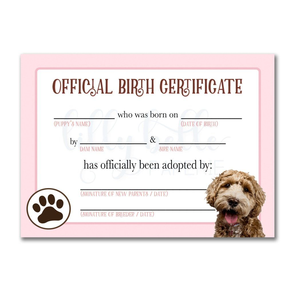 Pink Goldendoodle Birth Certificate Dog Birth Pet Adoption Certificate Dog Adoption Certificate