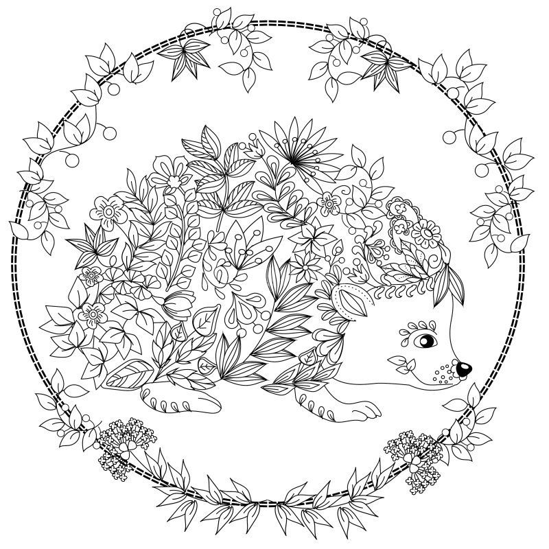 Cute Hedgehog Coloring Page Design Ms Malvorlagen Coloring Pages Hedgehog