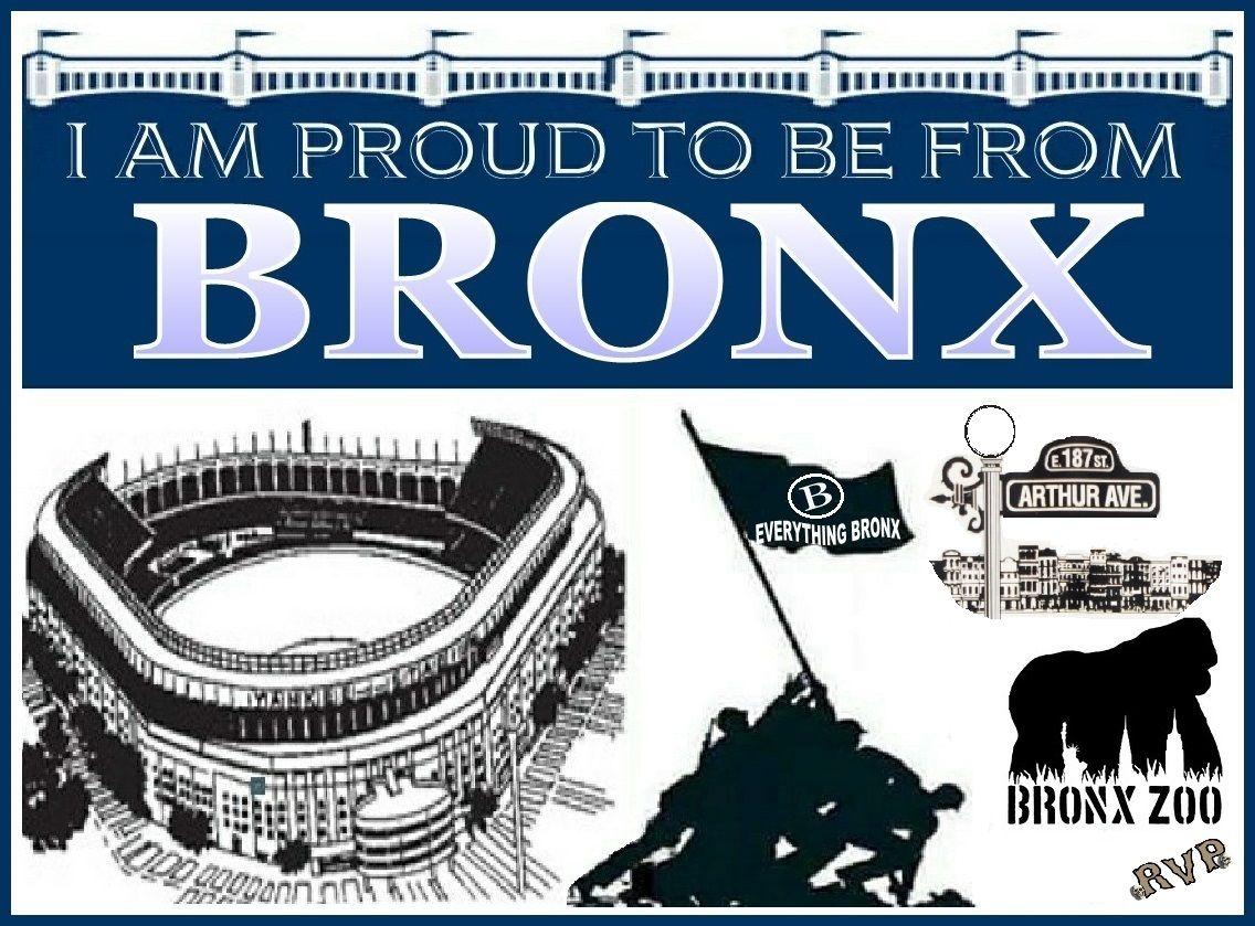 Bronx New York Memes Movie Posters Poster New York