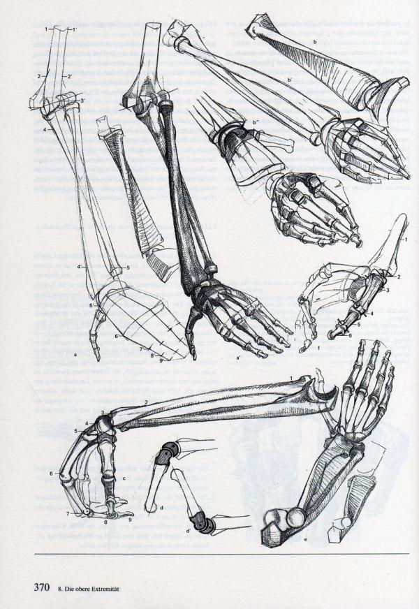 """The Art of Alberto Lolli* from the book """"Struttura Uomo"""" \"""