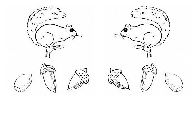 squirrels and acorns coloring page, or patterns for early