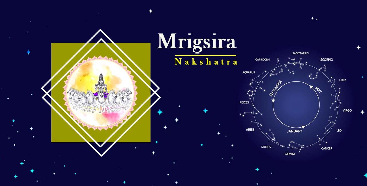Mrigsira Nakshatra Its True Nature In 2020 Career Astrology Astrology Meaning Astrology