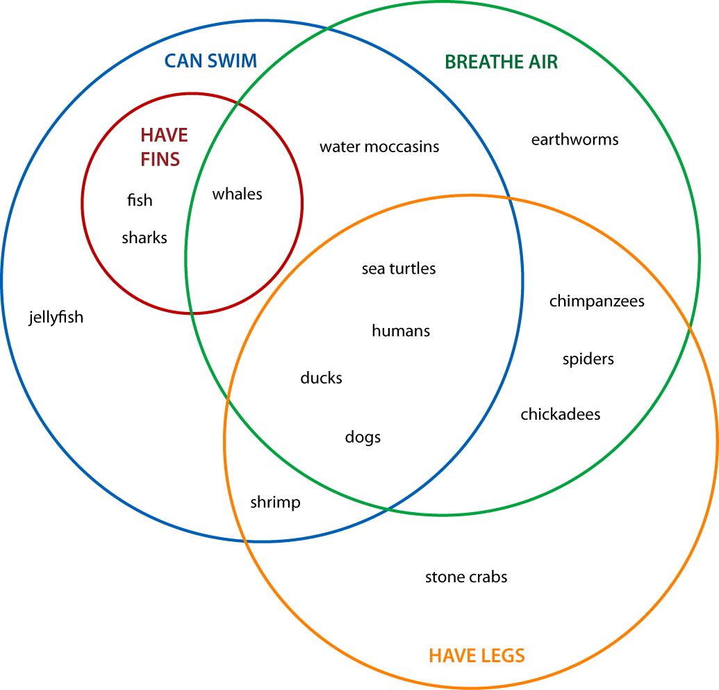 venn diagrams animals 4 set classification more makes me think preschool animals venn diagram animal venn diagram [ 1035 x 993 Pixel ]