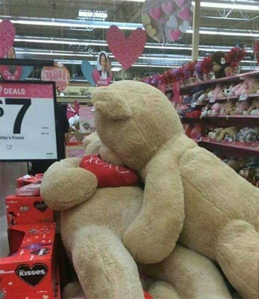 giant teddy bears celebrate valentines day at walmart funny pictures at walmart http - Walmart Valentines Stuffed Animals