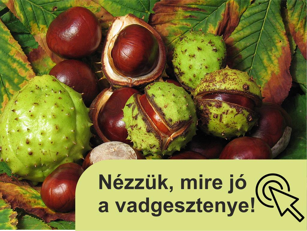 Sonbaharın şifa deposu: Sarı meyve ve sebzeler