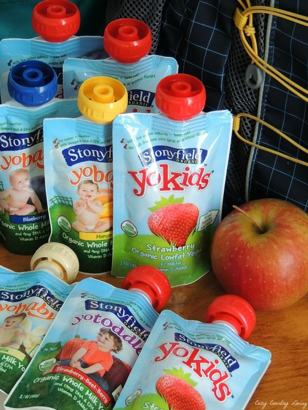 Healthy Snacking With Stonyfield Organic Yogurt Pouches Organic