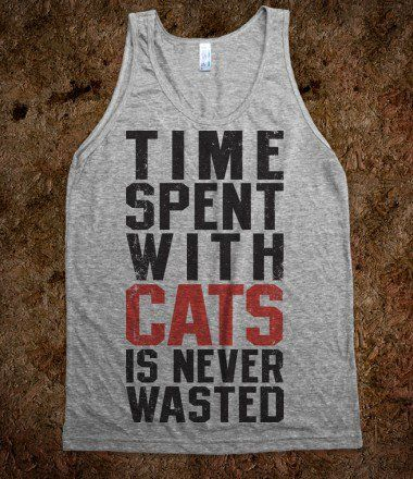 Time Spent With Cats Is Never Wasted!