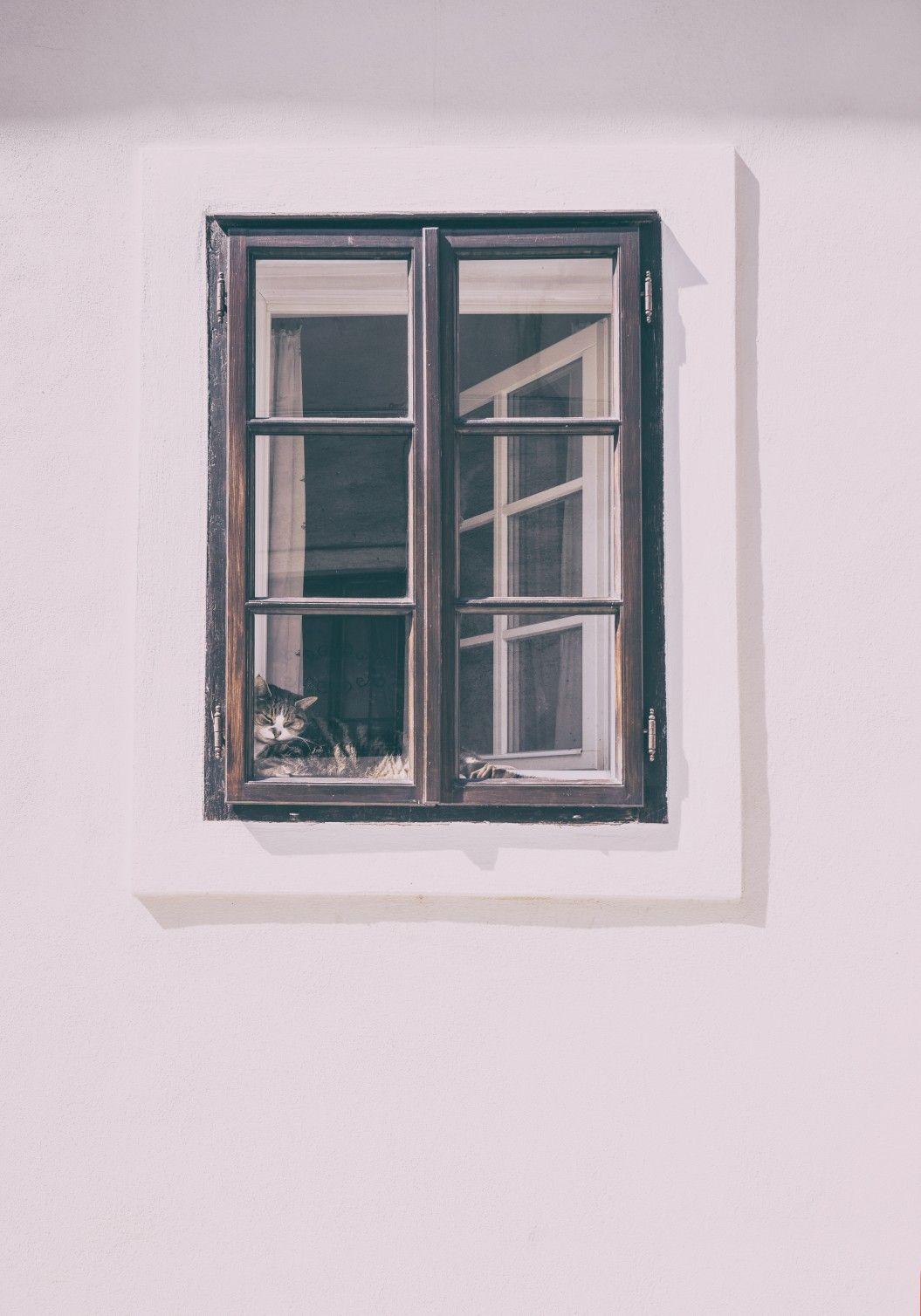 Beautiful Einfache Dekoration Und Mobel Moderne Fenster Energiesparend Und Einbruchssicher #6: Fenster Mit Sprossen Sind Beliebt Und Modern. Glasteilende Sprossen, Wiener  Sprossen Und Innenliegende Sprossen