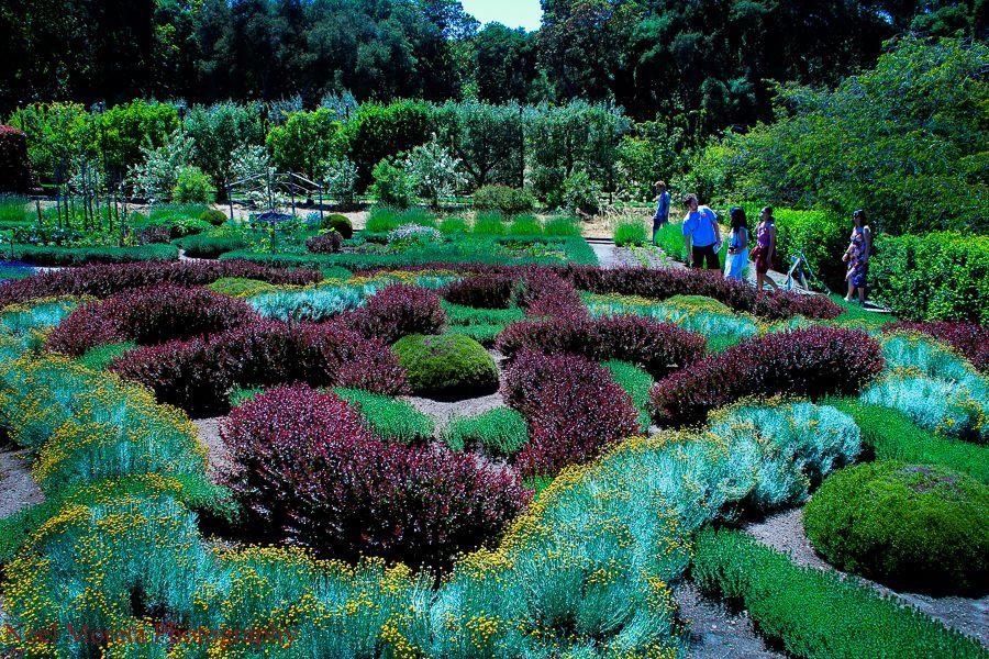 Filoli Gardens in Summer time Beautiful flowers garden