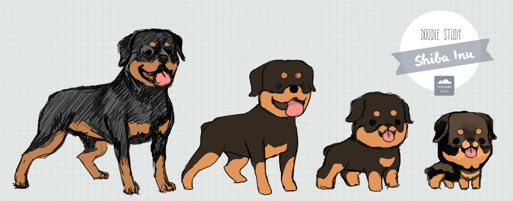 Dost Rottie Jpg Puppy Drawing Animated Animals Cartoon Animals