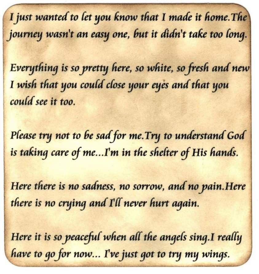 Pin by Tammy Hosey on FURBABY HEAVEN Sympathy quotes