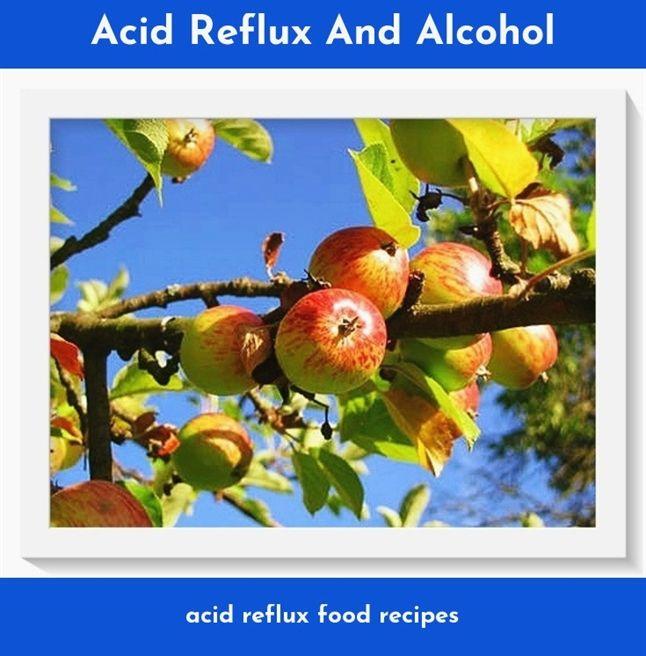 Acid Reflux Book