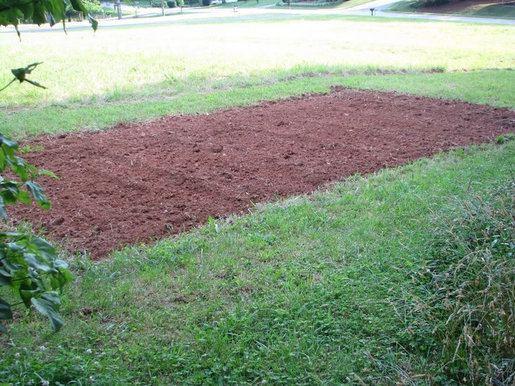 What works best for your garden, in ground, raised beds