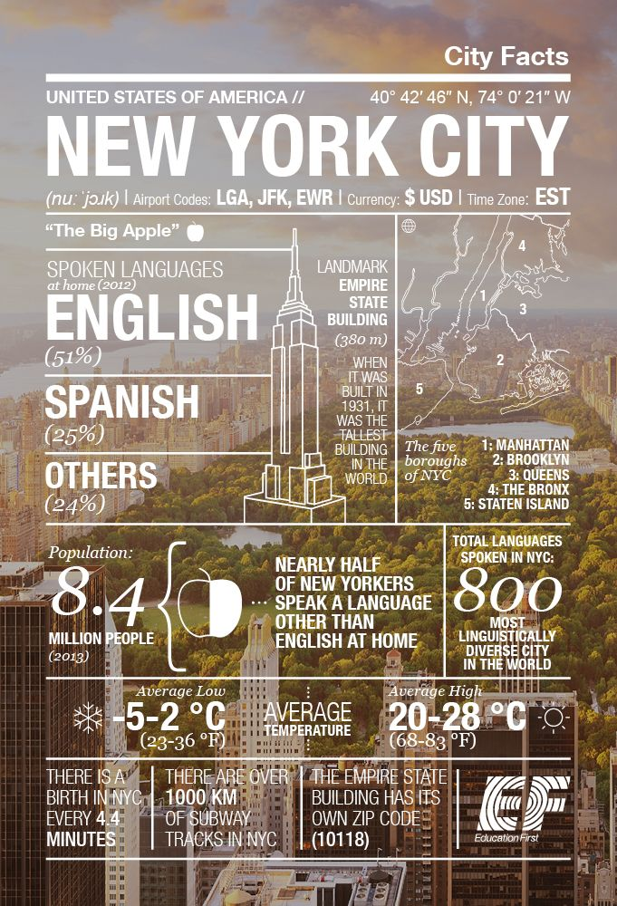 The Big Apple In A Nutshell: New York Infographic