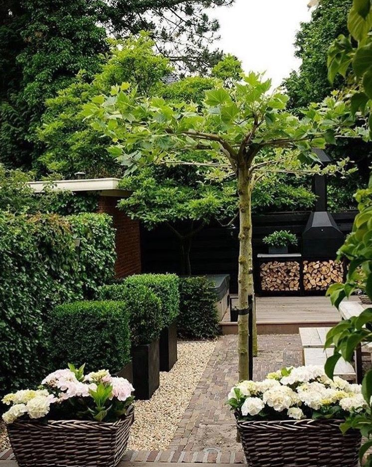 Pin by Renée on Smal tuin Outdoor landscape design