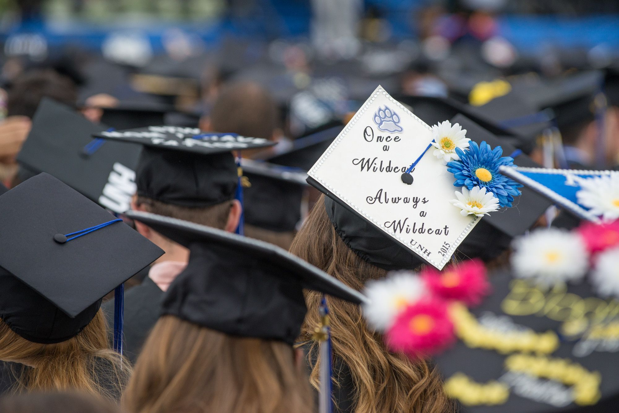 Once A Wildcat Always A Wildcat Unh Commencement University Of