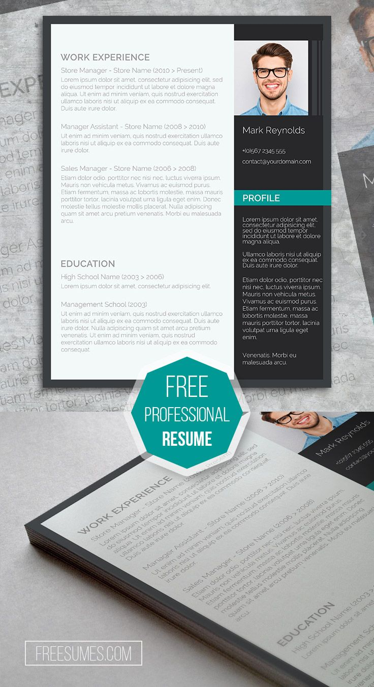 Free cv template The Modern Professional u2013